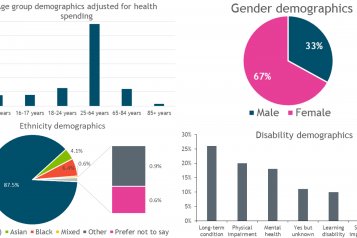 Graphs of demographic analysis